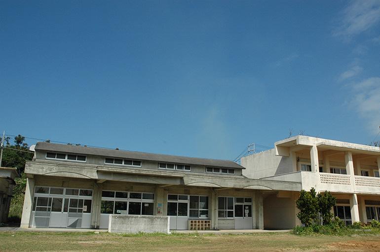 旧古宇利小学校のガジュマル